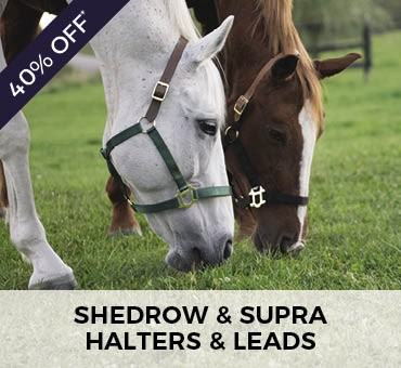 Greenhawk Promobox 5 - Shedrow & Supra Halters and Leads - 40% Off